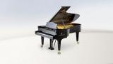 C. Bechstein Concert - C 234
